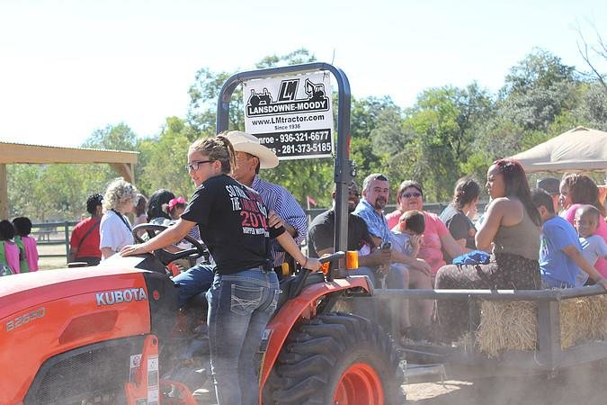 Dallas-Fort Worth Pumpkin Patches - TripSavvy